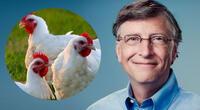 Bill Gates educará en negocios a los pobladores africanos