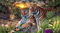 ¿Cuántos tigres puedes ver?