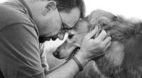 Tu perro podría estar leyendo tu mente, su comportamiento lo revelaría