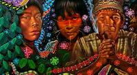 Chamán explica los peligros de utilizar la ayahuasca como droga medicinal