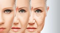 Con este producto lograrás el deseado retraso del envejecimiento.