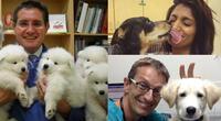 Mira todo el amor de los veterinarios hacia sus pacientes