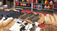 También se vende parte de animales para usarse como llaveros.