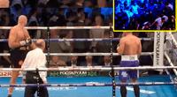 La pelea fue entre dos grupos fanáticos de los boxeadores.