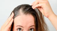 La aparición de las canas es señal de una disminución en la producción de melanina, pigmento responsable de dar color oscuro al cabello