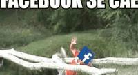 Facebook e Instagram presentaron una caída mundial en el uso de su plataforma social.