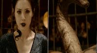 Nagini es la serpiente que le salvó la vida a Lord Voldemort.