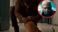 Esta es la precisa escena en que Nick Fury acaricia a Chewie, el gato alienígena. Foto: Captura.