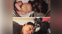 Así lucen dueños y perros a los largo del tiempo.