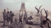 Fotógrafo inmortalizó a las tribus supervivientes y los resultados son maravillosos.