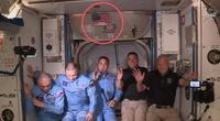 Los astronautas de Crew Dragon.