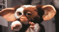 Gremlins 3, habría contado mas sobre los gremlins