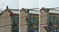 Un hombre se encuentra repentinamente con un babuino salvaje en su techo y sufre aparatoso accidente (VIDEO)