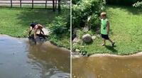 ¡Insólito! Mujer se adentra a corral lleno de cocodrilos con todo e hijo para recoger su billetera (VIDEO)