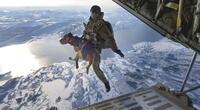 ¡Increíble hazaña canina! Perros se lanzan en paracaídas desde un avión (VIDEO)