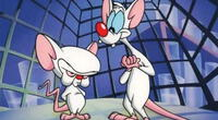 ¡Pinky y Cerebro regresan! La caricatura pronto estará vía streaming