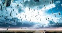 ¡Para no creer! Pez cae del cielo y destroza el parachoques de un auto (FOTOS)