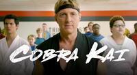 Cobra Kai: Estos son los personajes que sí practican karate en la vida real
