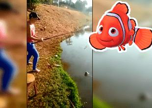 La lucha duró un minuto y el ganador fue el pez.
