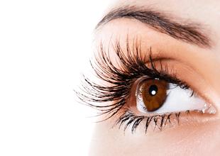 Las pestañas se encargan de proteger a los ojos evitando la entrada de organismos que puedan afectarlos