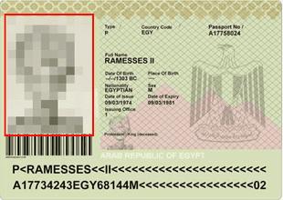 Pasaporte inspirado en la historia del New York Times