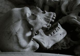 Obreros hallaron alrededor de 1000 dientes humanos dentro de una pared de un edificio en Georgia.