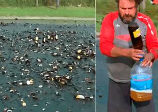 Un camión de cervezas volcó en Argentina.