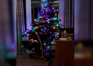 Mujer asegura haber captado el rostro de un fantasma ensu árbol de Navidad