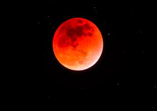 """Conoce todo sobre """"la superluna de sangre de lobo"""", elgran evento astronómico que ocurrirá a inicios del 2019"""