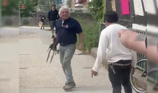 Anciano atacó a protestantes