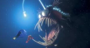 El pez que casi se come al papá de Nemo: Conoce la impresionante conducta reproductiva del Rape