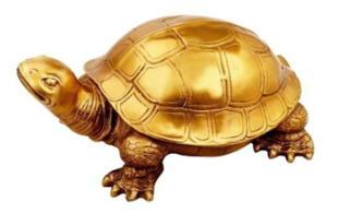 ¡Maravilla natural! Aparece tortuga dorada y lugareños creen que es la reencarnación del dios Vishnú (FOTOS)