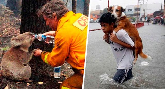 Las 7 fotos más conmovedoras que dieron la vuelta al mundo
