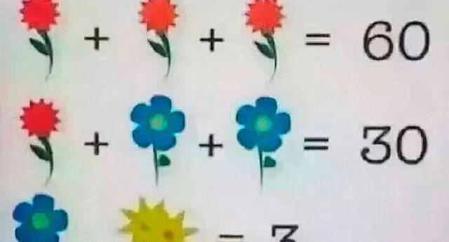 ¿Cuál es la respuesta correcta? El acertijo de las flores que solo un 9 % logra resolver