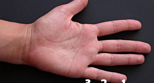 Descubre aquí qué significa el largo de tu dedo meñique