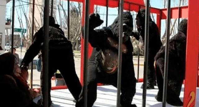 Encargado de circo señaló que solo buscaban llevarle sano entretenimiento a los niños