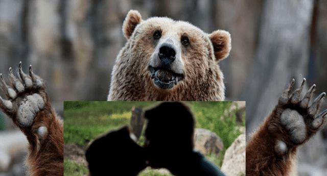 Oso grizzli se robó la atención de todos en peculiar boda