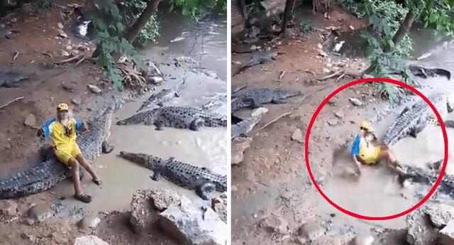 Tamacu se mete en tierra de cocodrilos, les da de comer y sucede lo peor.