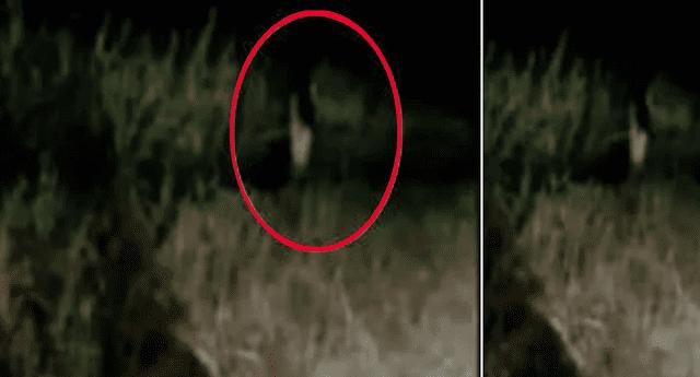 Fantasma de un solo pie causa terror en Tailandia.