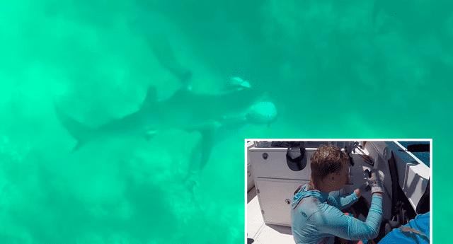 Will Krause recibió puntos tras la mordida del tiburón.