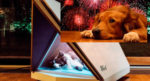 Ingenieros de Ford crearon una ingeniosa casita para perros que los protege de los estrepitosos ruidos que producen los pirotécnicos