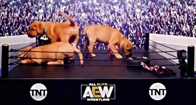 AEW, la rival de WWE presenta su primer