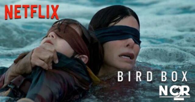 Confirman que Bird Box tendrá una secuela y Netflix ya se encuentra trabajando en ella