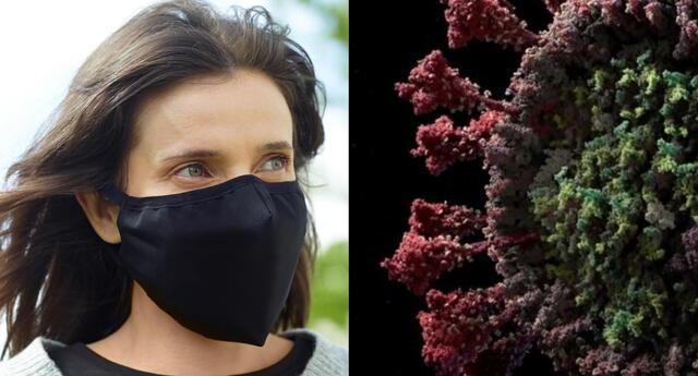 MOxAdTech es una mascarilla con eficacia en la reducción de bacterias y virus avalada científicamente. | Fuente: Composición.