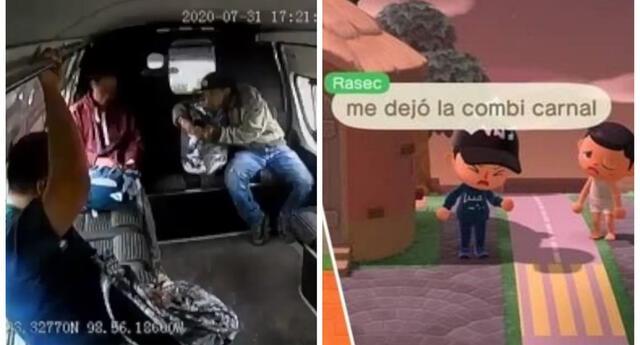 El ladrón que recibe golpes en un bus de México llega a Animal Crossing.