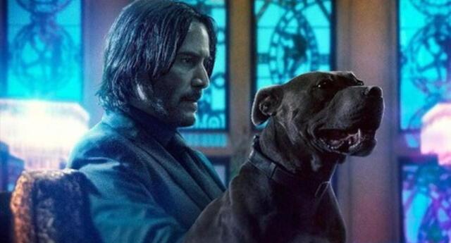 ¡La franquicia no se termina! Confirman John Wick 5 con Keanu Reeves
