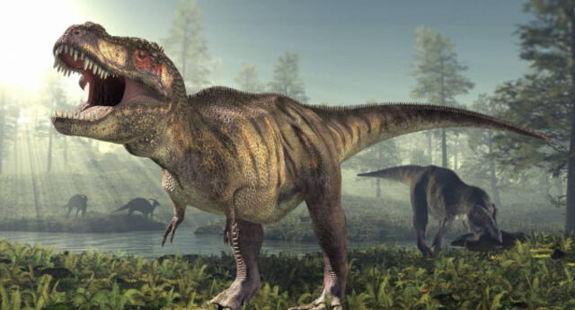 Hallan nueva especie de dinosaurio emparentada con el Tyrannosaurus rex