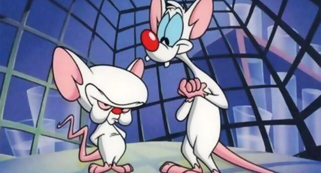 ¡Pinky y Cerebro regresan! La caricatura pronto estará vía streaming
