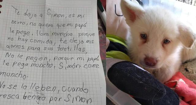 Niño conmueve con triste carta al dejar a su perrito en albergue