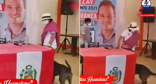 Candidata al Congreso patea a un perro en su local partidario.